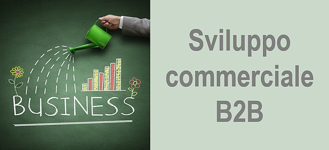 sviluppo_commerciale_b2b.png