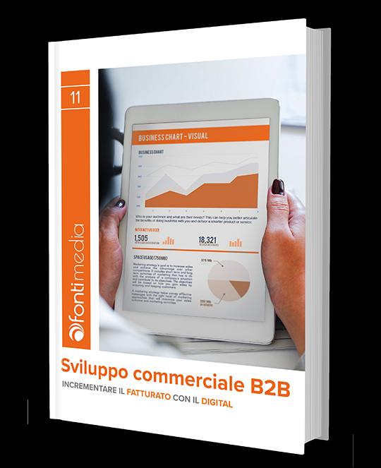 eBook Sviluppo commerciale b2b