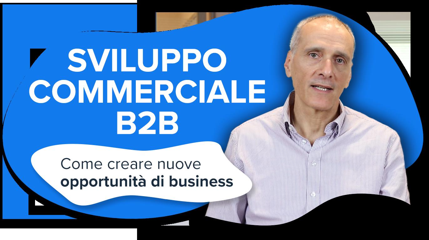 Sviluppo commerciale b2b